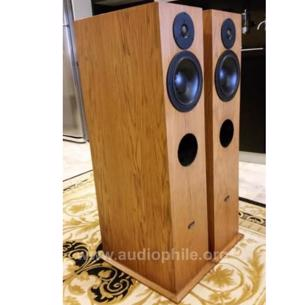 Dynaudio aries floorstand stereo speaker fırsat.